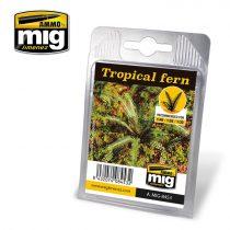 A.MIG-8453 Trópusi páfrány - TROPICAL FERN
