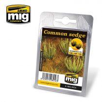 A.MIG-8456 Közönséges sás - COMMON SEDGE
