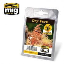 A.MIG-8457 Száraz páfrány - DRY FERN