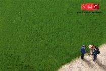 Auhagen 75615 Szórható fű, sötétzöld, 4,5 mm szálhosszúság, 50 g