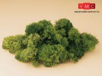 Auhagen 76651 Izlandi moszat, zöld, 50 g