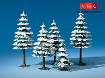 Auhagen 77920 Téli fenyőfa, 5 db (H0/TT)