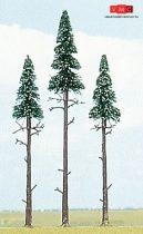 Busch 6118 Magastörzsű fenyőfa (3 db) (H0)