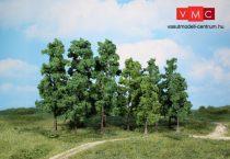 Heki 1362 Lombos fa (30 db), 12-18 cm