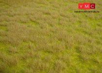 Heki 1840 Wildgras: szavanna (45 cm x 17 cm)