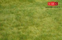 Heki 1841 Wildgras: tavaszi fű (45 cm x 17 cm)