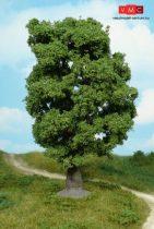 Heki 1940 Tölgyfa, 18 cm
