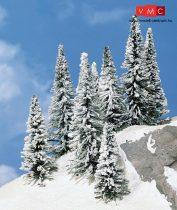 Heki 2160 Havas fenyőfa (8 db), 5-7 cm