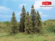 Heki 2176 Vörösfenyő (5 db), 14 - 18 cm magas