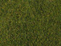 Noch 07291 Téphető legelőfű, középzöld - 20 x 23 cm
