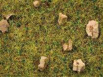 Noch 08360 Szórható fű, 2,5 mm, köves hegyi mező, 20 g