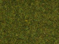 Noch 08361 Szórható fű, legelő, 4 mm, 20 g (0,H0,TT,N,Z)