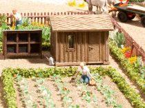 Noch 14109 Gyümölcsöskert-készlet (H0) - LC