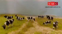 VMC 99100 Fekete-fehér tehenek vegyesen, 9 db (H0)